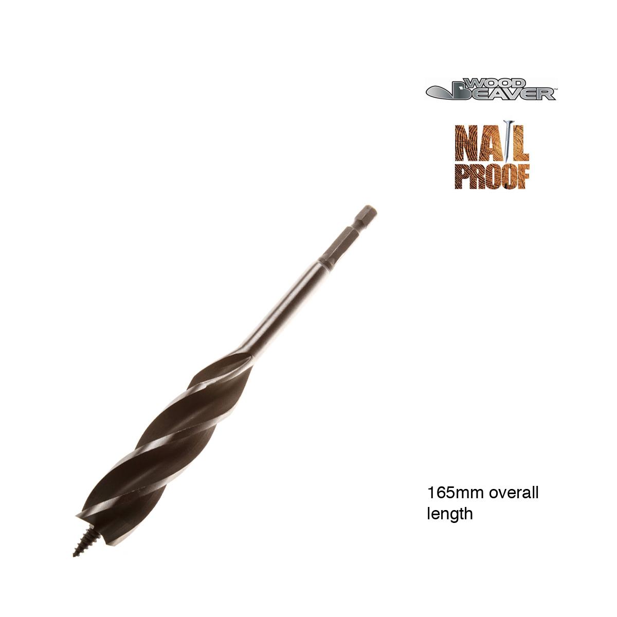 Nail-Proof WoodBeaver